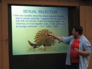 Becky 's Presentation